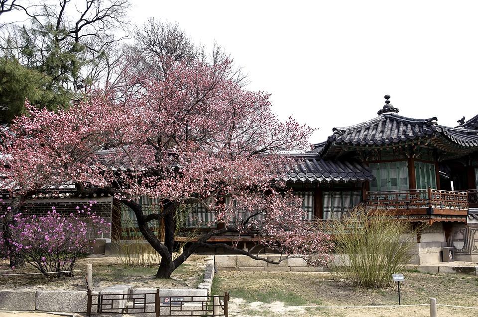 1度は行きたい!ソウルにある世界遺産【昌徳宮】
