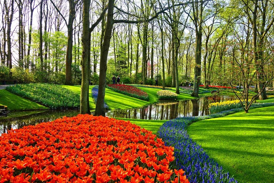 ソウル近郊で春に行きたい公園集♪まるで韓国ドラマのワンシーン!?